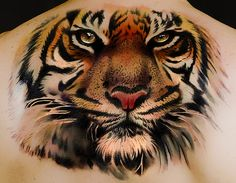 pictures of tiger tattoos | tattoo tiger by andrea afferni colour realistic tattoo tiger www ...