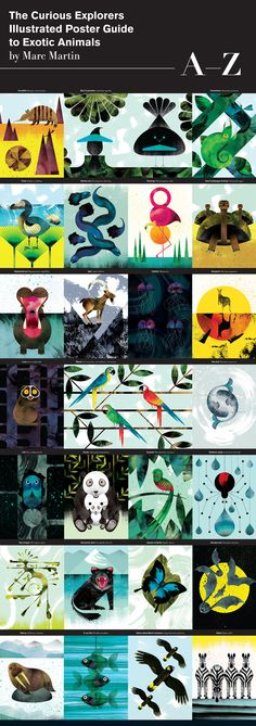 The Curious Explorers Illustrated Poster Guide to Exotic Animals by Marc Martin