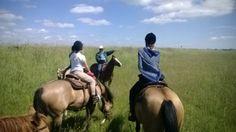 En varm dag på hestene med Michael der guider os gennem nationalparken Vadehavet