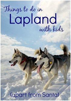 Forget Santa - here are some of the best things to do in Lapland for kids throughout the winter, from husky sledding to ice festivals, including tips for an independent trip to Finnish Lapland. #lapland #laplandwithkids #finnishlapland