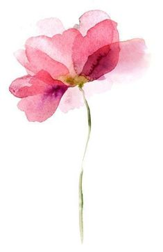 pencil drawings - Your Spirit Circle 6 Ways To Befriend Your Spirit Guides Numerologist com Watercolor Cards, Watercolor Illustration, Watercolour Painting, Floral Watercolor, Painting & Drawing, Tattoo Watercolor, Simple Watercolor Flowers, Peony Painting, Watercolor Water