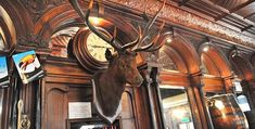 Stags Head | Live Irish Music and Dublin Comedy | Tel: 01 6793687  West of Trinity College