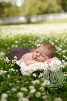 Newborn Baby Photo Session Ideas | Props | Prop | Child Photography | Clothing Inspiration| Fashion | Pose Idea | Poses |