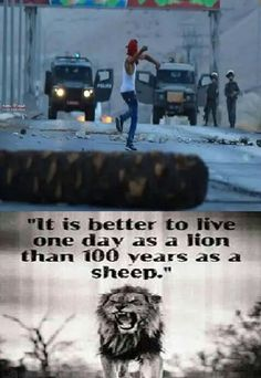 One civilian of Palestine has the bravery of 100 soldiers. Free Palestine