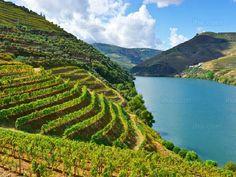 Afbeelding van http://img-cdn1.iha.co.nl/geo15277944/Afife-Wijngaarden-in-de-rivier-de-douro.jpeg.
