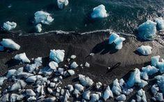 Glacial ice from Jokulsarlon Glaciel Lagoon often washes ashore on Breidamerkurfjara beach in Eastern Iceland.