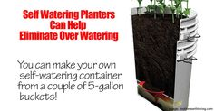"Almost anything will grow with self-watering containers which are simply a water reservoir ""connected"" to the soil in the the container, allowing water to be always available to growing plants. Self-watering containers or SIP's eliminate plants becoming stressed from lack of water. Click here on how to easily make your own with 5 gallon buckets: …"