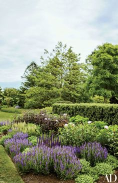 Astilbe, peonies, and salvia bloom in the garden | archdigest.com