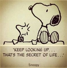 Snoopy quotes that support the science of happiness, citat, toon, cartoon, love it Peanuts Gang, Peanuts Cartoon, The Peanuts, Toon Cartoon, Peanuts Comics, Snoopy The Dog, Snoopy And Woodstock, Peanuts Quotes, Snoopy Quotes
