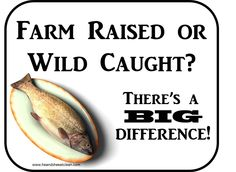 He and She Eat Clean: A Guide to Eating Clean... Married!: Clean Eat Education :: Farm Raised vs. Wild Caught Fish