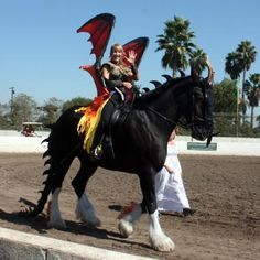 dragon costume for horse - Google Search