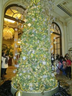 The Plaza Hotel Lights its Great Gatsby Christmas Tree : Condé Nast Traveler  2012  My husband & I were there in early December.  It was about 5pm & no one else was there....so beautiful!