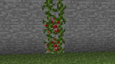 Berry Vine | Minecraft Building Inc - Use lapis or redstone ore blocks, cover with vines.