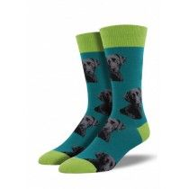 Teal Lab-or Of Love Dog Socks | Joy of Socks