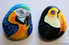 Set of Macaw and Toucan Hand Painted on pebble | Unique and Realistic Hand Painted Rock Art by Sunanda Sarker