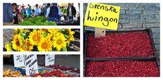 Farmers' Market finds 2012