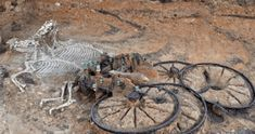Iron Age Chariot Burial Site Found – Complete with Horse and Rider - The Epic History In the second time in two years, an Iron Age char. Ancient Aliens, Ancient Egypt, Ancient History, Archaeological Discoveries, Archaeological Finds, Ancient Mysteries, Ancient Artifacts, Iron Age, Prehistory