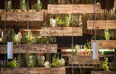 Academia Barilla Restaurants,NY #plants #garden #planter