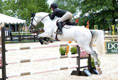 Equestrian Photography Blog : Photo