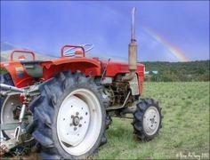 """Under the Rainbow"" by Nina Anthony"