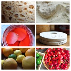 Gifts for the Fermentation Obsessed   |   Phickle