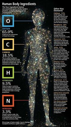 Human Body Ingredients via imaginaryfoundation: 'The average human has approximately 100 trillion cells and each cell is made of approximately 100 trillion atoms, each of which were originally created in the center of a star...' Here it is by mass: http://chemistry.about.com/od/lecturenoteslab1/a/Elemental-Composition-Of-The-Human-Body-By-Mass.htm #Infographic #Science #Human_Body #Chemical_Composition