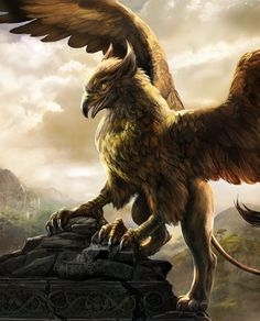 Gryphon (Griffin) A magical lion/bird guardian of sacred arcane libraries. It is said that no one can pass a Griffin if they are fearful, greedy, or have no self-confidence; they are refused entrance. It symbolizes a need to protect something powerful within by the use of fierce boundaries.