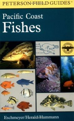 A Field Guide to Pacific Coast Fishes : North America (Peterson Field Guides) by Earl S. Herald, http://www.amazon.com/dp/061800212X/ref=cm_sw_r_pi_dp_.eS8rb1WD7BJZ