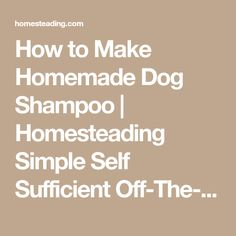How to Make Homemade Dog Shampoo   Homesteading Simple Self Sufficient Off-The-Grid   Homesteading.com
