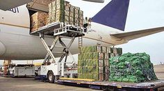 http://news.xpertxone.com/india-a-bright-spot-in-slowing-air-cargo-global-market/