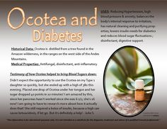 Here is a wonderful testimony about Young Living Ocotea Essential Oil and Diabetes. This wonderful graphic was created by Beth Yenca.  To get started with your own journey with Young Living visit me at www.livingwithscents.com to learn more. As always feel free to message me with questions.