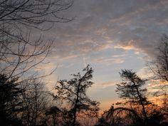 Sunrise January 23, 2009