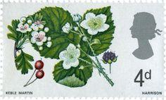 Hawthorne & Bramble #SpecialStamp from 1967 'British Wild Flowers'