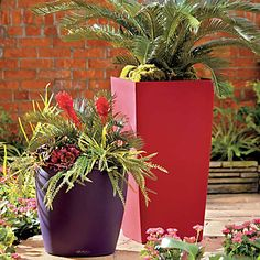 Self-Watering Planters-Modern Smooth Surface