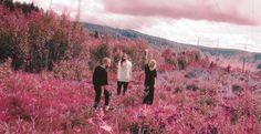 Postiljonen – Wait   Nordic by Nature