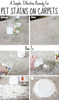 Clean old Pet Carpet Stains. Pour enough vinegar to soak the stain and THEN add a small amount of baking soda. If you do the reverse, you will have a noisy, bubbly mess. Do it the right way, and you can hear the recipe cackling away, telling you how it is cleaning and deodorizing without leaving any residue. You need to let the spot dry for a day or two before sweeping up and then vacuuming.