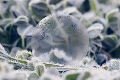 Frozen Bubble - by ME