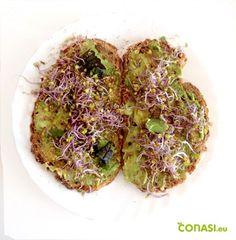 Tostadas Sin Gluten, Healthy Nutrition, Avocado Toast, Earthy, Zucchini, Cabbage, Vegetables, Breakfast, Food