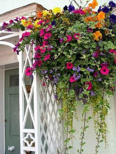 Hanging Flower Basket Inspiration - Daily Appetite