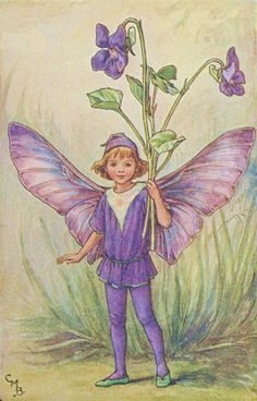 violets fairy