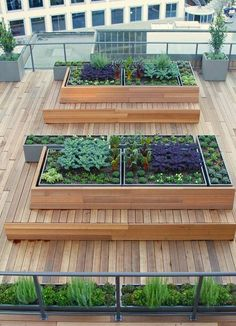 Raised Garden Bed Roof | Roof Garden Transformation Ideas - Beautiful and Cheap Gardening Design That Will Save You Space and Money!