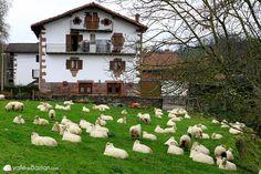 Imposible no enamorarse del Valle de Baztán... #Navarra
