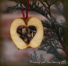 Zimní tvoření s dětmi: krmení pro ptáčky - Winter craft: feed for birds Winter Craft, Advent, Carnival, Crafts For Kids, Birds, Apple, Fruit, Kindergarten, Mardi Gras