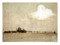 Crop Field and Barn. A Photographic Print by Mia Friedrich at Art.co.uk