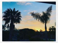 I'm ready to kick butt today! ☀☀☀☀☀☀☀☀☀. #sunrise #bluesky #viewfrommyworld #tacotuesday #blessed #beinthemoment #freshstart #encinitas #sandiegoconnection #sdlocals #encinitaslocals - posted by Christina Anne https://www.instagram.com/cahill104. See more post on Encinitas at http://encinitaslocals.com