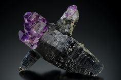 Quartz var.Amethyst on Smoky Quartz - Pohndorf Mine, Jefferson County, Montana, USA Size: 4 ½ x 5 ½ inch