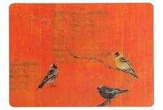 One Kings Lane - rockflowerpaper - S/4 Orange Finch Placemats