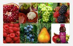 El increíble poder de los antioxidantes en una combinación única de jugos y extractos de frutas. Forever Pomesteen
