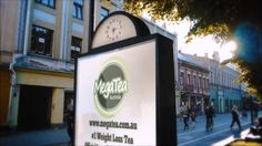 MegaTea #1 Weight Loss Tea Official Launch Date