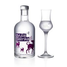 Gyulai_palinka_key Just kind of fun in a Smirnof type bottle